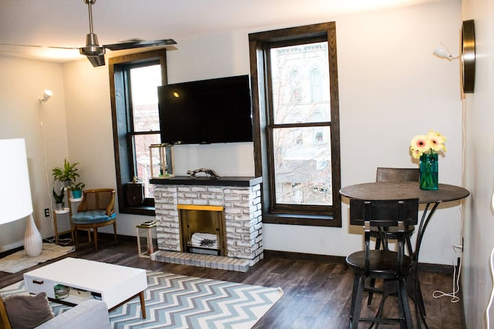 Private-Downtown Apt-Sleeps 4 comfortably