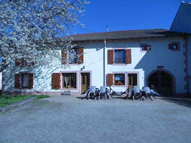 Gîte Jonquille près de Gérardmer 14 personnes - Aumontzey - House