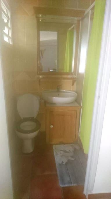 Sanitaire (Toilette+douche)