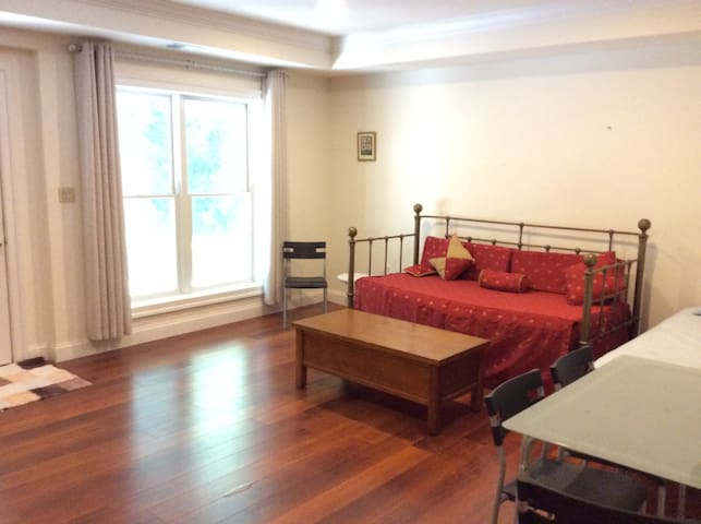 Lower Level apt with private entrance - Bethesda - Apartment