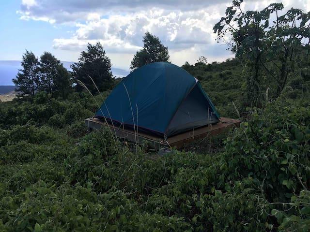 Camp on Haleakala (Maui) - Blue - Tent provided
