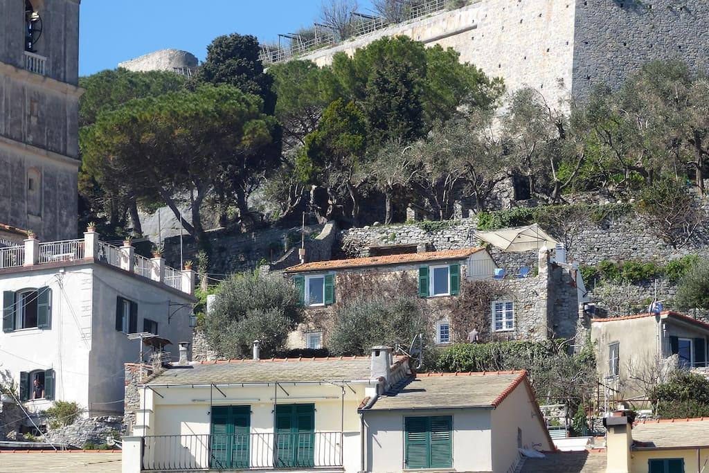 Vista della Bouganvilla dal paese