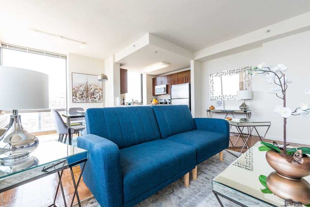 Sofabed in the living room for your extra guest.