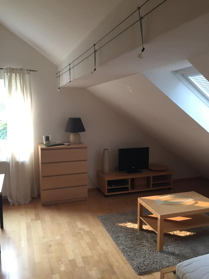 Cosy and Calm Studio with Bathroom next to Bonn.