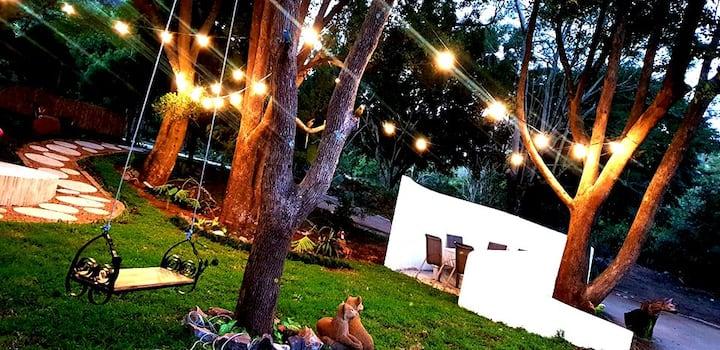 Luxury Forest Retreat - Pet friendly