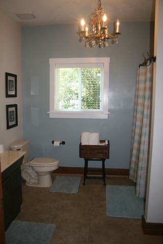 Master bathroom with tub/shower combo