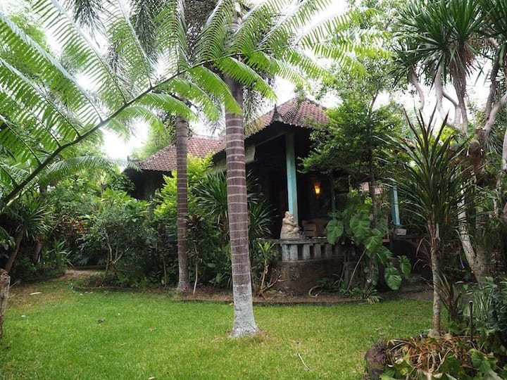 Mahesa house 1- one bedroom private house in ubud