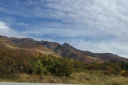 Mountainside Getaway/where the deer roam! - Layton