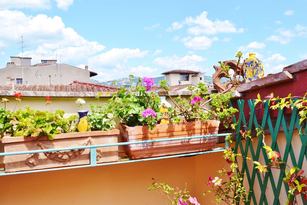 The view to Fiesole and the sky from your terrace