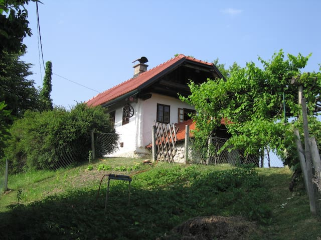 Holiday house CAROVINA in whole natura