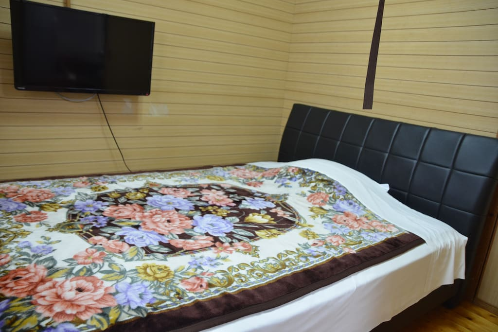 Nomal Bed room, can sleep for 2 people. TV and AC