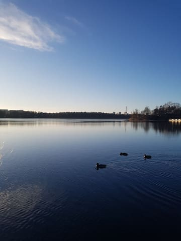 Lovely, cheap room close to nature and Stockholm C