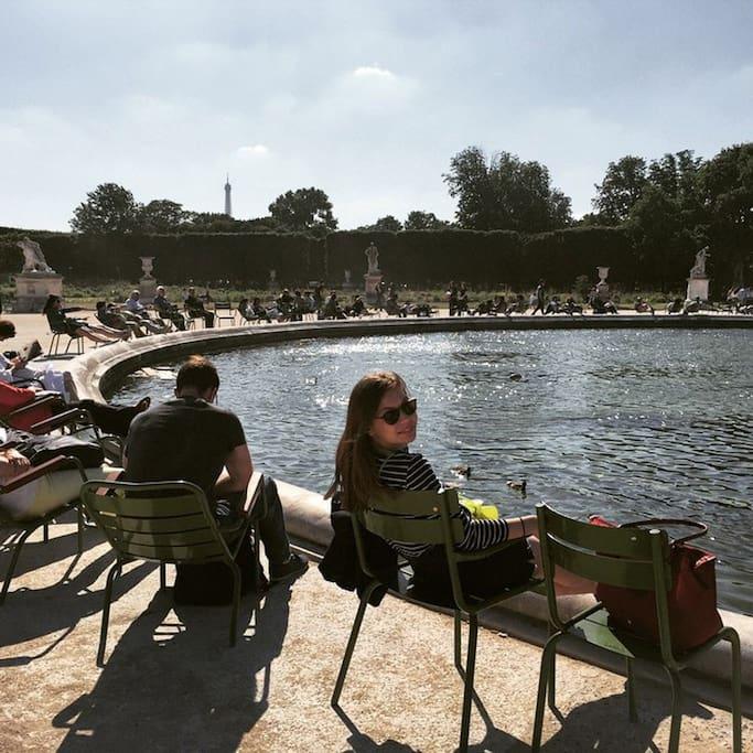 Photo of Tuileries Garden in Tuilerie