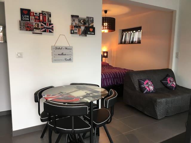 Superbe studio neuf, 2 adult 2 enf - Hilsenheim  - Lägenhet
