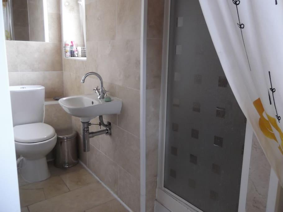 En suite shower room with toilet