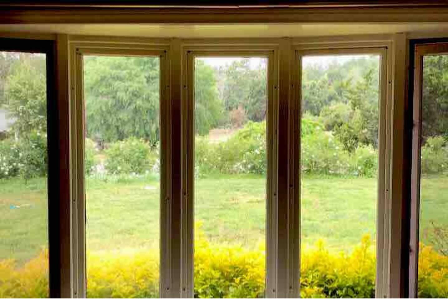 Garden view from baywindow