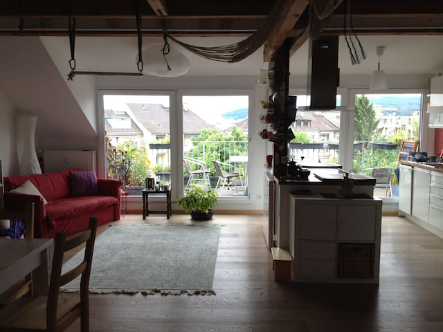 Beautiful flat with huge terrass in Basel - Basel - Daire