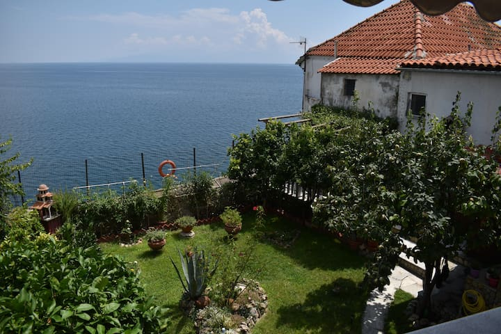 SEA VIEW ZOI HOUSE