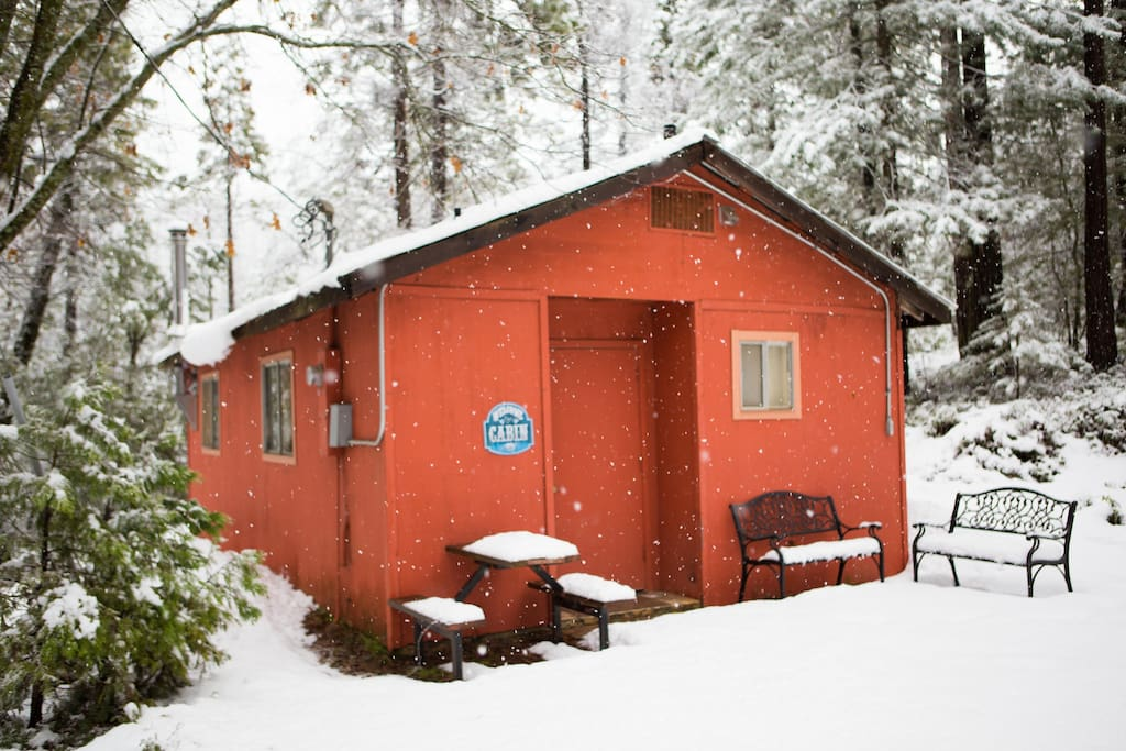 Private Cabin in the woods is a perfect in winter, too!