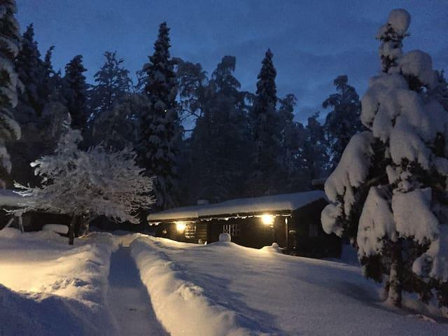 Charming log cabin x-country heaven