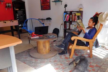 Una experiencia auténtica en Veracruz