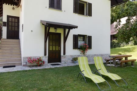 Apartment Macesen with terrace and Triglav views