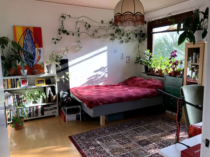Room in collective vegetarian row house