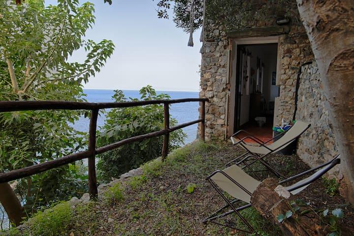 Paradiso Scilla - Scilla - Casa de campo