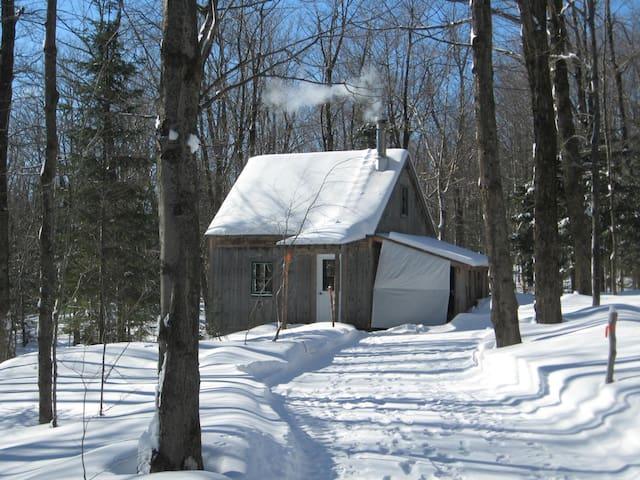 CABANE/REFUGE, forêt et lac en exclusivité - Saint-Rémi-de-Tingwick - Blockhütte