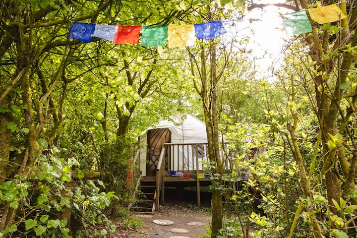 The Bentwood Yurt, a cosy retreat.