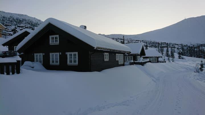 Ski in/out alpint, längd och topptur Gaustblikk