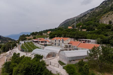 Village house near Kotor (wild beauty)