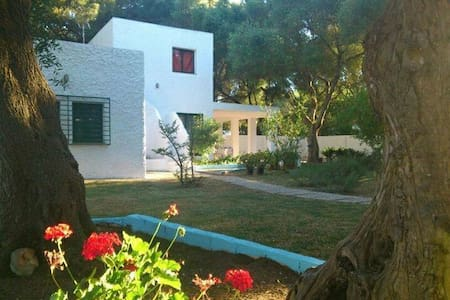 Bonita casa rodeada de arboles - Barbate - Casa