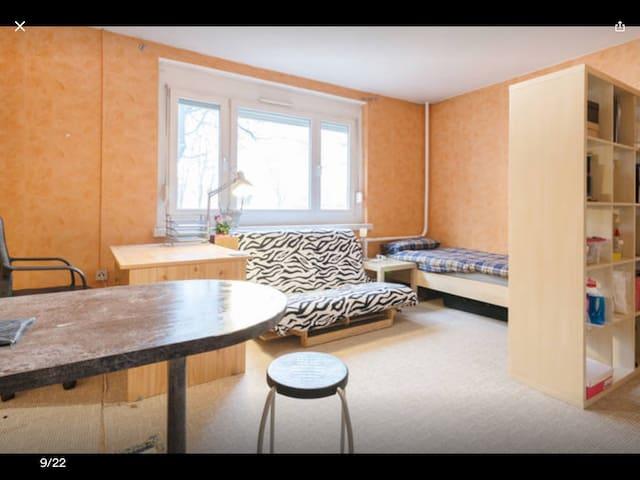 Bequeme Wohnung in Altstadt dresden - Dresden - Leilighet