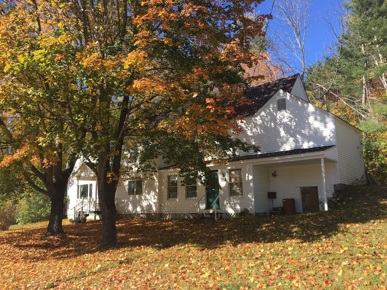Beautiful vibrant fall foliage- a must see