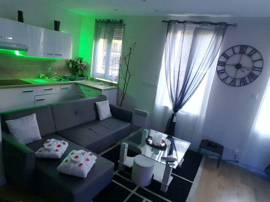 appartement avec jacuzzi privatif appartements louer toulouse languedoc roussillon midi. Black Bedroom Furniture Sets. Home Design Ideas
