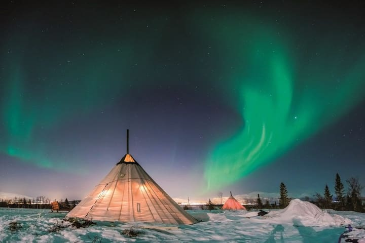 Aurora Glamping with the Whales near Tromsø