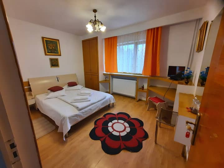 "Pensiunea ""Lis House"" - double bed room"