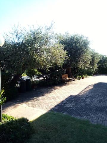 Appartamento ammobiliato a Bastia