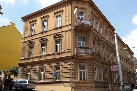 Home apartment - Teplice - 公寓