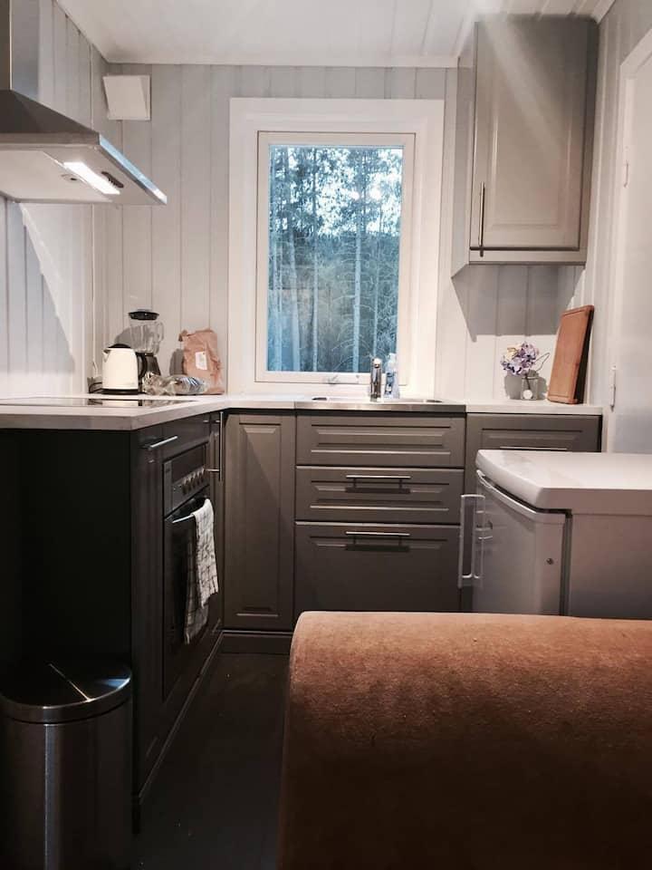 Perfekt hytte i Hemsedal!