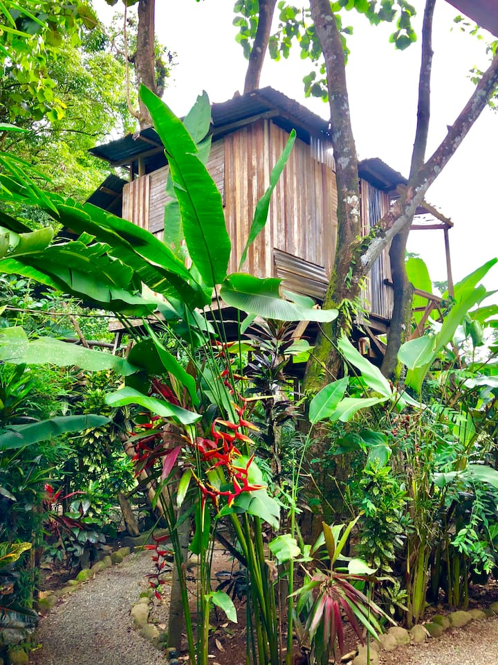 """Penthouse"" Treehouse at Flutterby House Hostel"