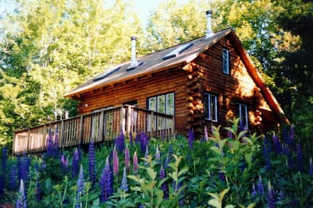 Relaxing Log Cabin in the White Mountains - Egyéb
