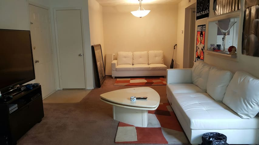 Nice cozy 1br fully furnished - Stone Mountain - Pis