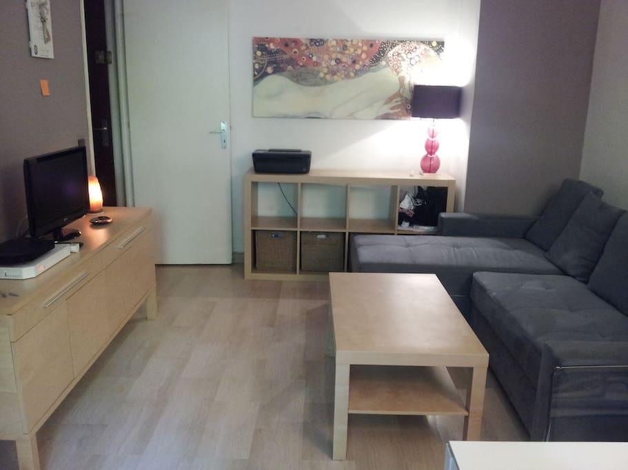 Salon 20m2 avec canapé convertible, TV, WIFI