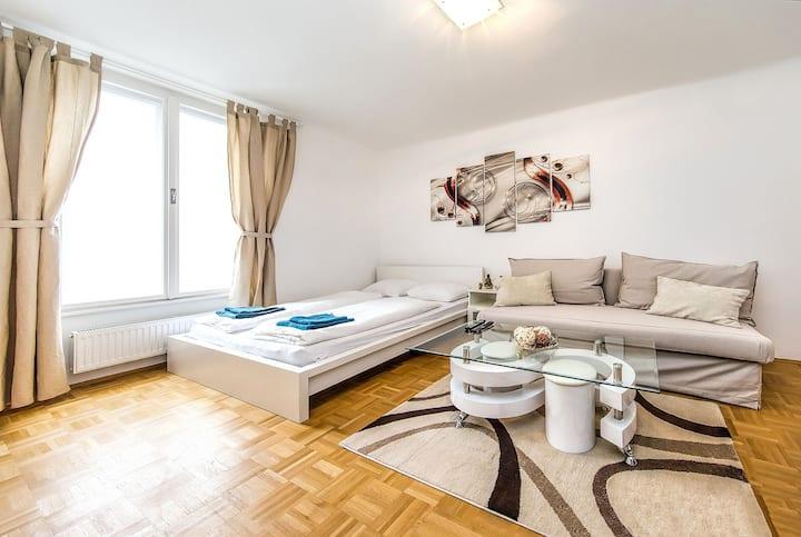 Central Apartment Marc Aurel Strasse /1st District