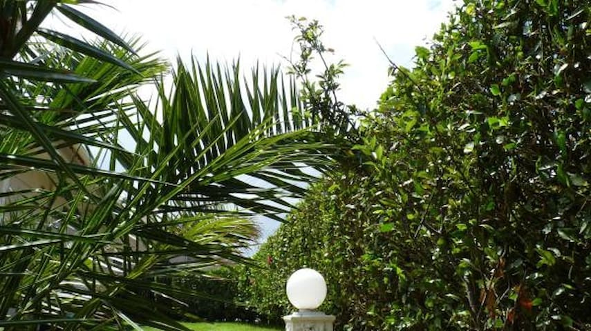 Azores Garden Apartment - Total Private
