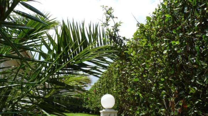 Azores Garden Apartment - Private (Self- Check In)