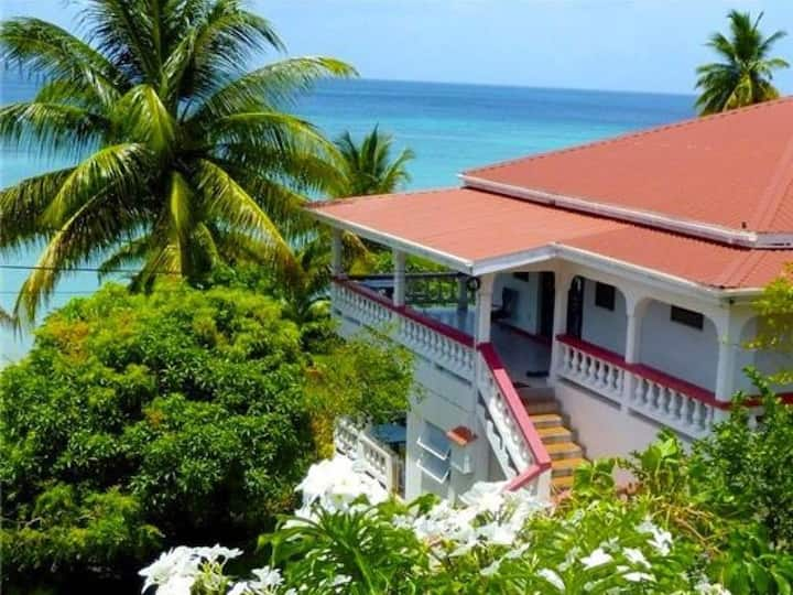 Mango Beach Front Cottage