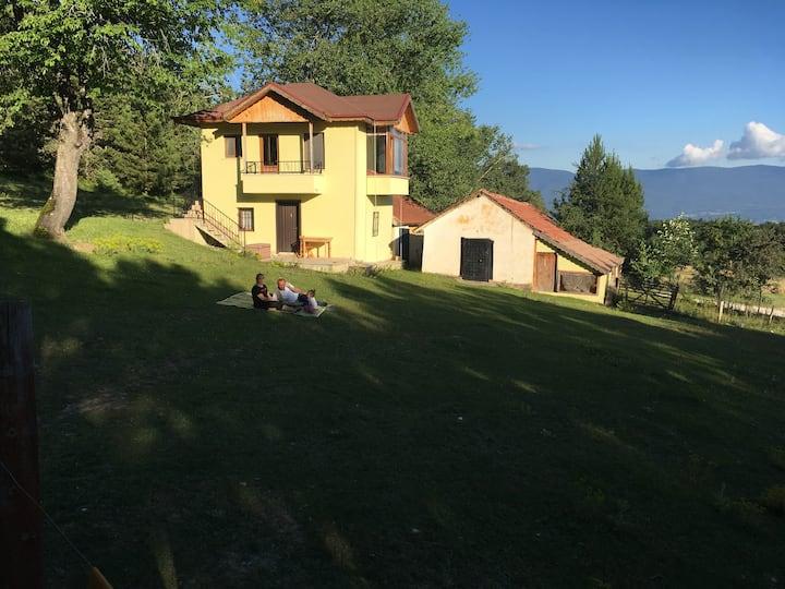 Neşe palamudu Dağ evi (Kücük ev) Çakmaklar